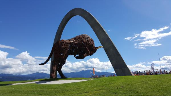Bull on Red Bull ring